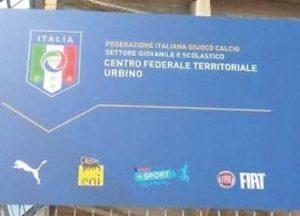 Volponi – Urbino